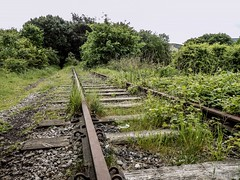 Into The Woods (Jason_Hood) Tags: disused abandoned railway railroad