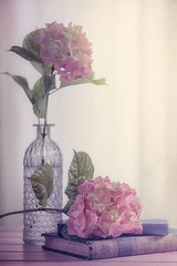 Hydrangea time (RoCafe Off for a while) Tags: stilllife books flowers hydrangeas home nikkormicro105f28 nikond600