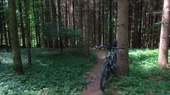 Eugendorf, Gitzen, Laufen (twinni) Tags: mw1504 18062017 bike biketour mtb salzburg austria österreich flachgau bayern deutschland winterradl winterbike 20 bergziege