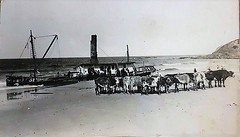 Steamer 'OTUS' (1913 - 1923) wrecked on Main Beach Forster (Great Lakes Manning River Shipping NSW) Tags: glmrsnsw midnorthcoast woodenboat shipbuilding manningriver historicmanningvalley denissullivan coopernook shipwreck lansdowneriver otusdsbsco forsterpilotstation otus clarenceriver northcoaststeamnavigation ssotus forstermainbeach denissullivansyco people2bid cooee on131589