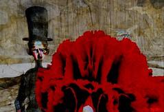 People power / Artists : Meilo Minotaur & Cap Cat Ragu (Bamboo Barnes - Artist.Com) Tags: meilominotaur capcatragu surreal theswamp art exhibition installation avatar flower thecapital bee carnation black red tan brown grey blue politics