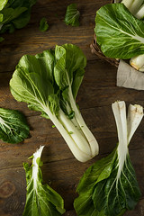 Raw Green Organic Bok Choy (brent.hofacker) Tags: agriculture asian background bok bokchoybokchoy brassica cabbage chard china chinese chinesecabbage choi choy cook diet edible food fresh freshness green head health healthy ingredient japanese leaf natural nature nutrition nutritious organic pak pakchoy plant raw salad vegetable vegetarian vitamin wooden
