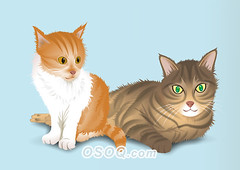 910009 (Osoq.com) Tags: wwwosoqcom pet animal caricature