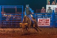 DSC_4525-Edit (alan.forshee) Tags: rodeo horse cow ride fall buck spin twirl bull stallion boy girl barrel rope lariat mud dirt hat sombrero