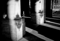 Présence et absence au Palais-Royal (Paolo Pizzimenti) Tags: atmosphère canalsaintmartin paris trottoir présence absence palaisroyal paolo olympus zuiko penf 25mm f18 film pellicule argentique m43 mirrorless dosineau