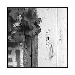 key hole • seurre, burgundy • 2017 (lem's) Tags: autocord minolta key hole door vine serrure porte ferme etange rouge seurre bourgogne burgundy