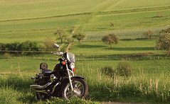 (felix.h) Tags: canoneos400d canon eos 400d digitalrebelxti eoskissdigitalx tokina5013528 tokina50135mm28 motorcycle motorbike bike hondavt750s taunus taunusmountains hesse hessen spring green fields landscape springtime