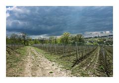 Untitled Image (Florin Aioanei) Tags: nature landscape romania sky florin aioanei