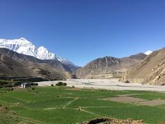 IMG_4182 (RubyWhatever) Tags: annapurnacircuit nepal day14 kagbeni kagbenitojomsom