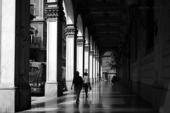 "Bologna.it (alice 240) Tags: autofocus ""nikonflickraward"" europa monochrome italia bologna travel tourism city europe italy alice240 atelier240art alicealicjacieliczka dark nationalgeographic light ngc emiliaromagna nikon flickr portici urban poetry street magic dream cinema film poeticmoment architecture blackwhite blackandwhite bw artistic creative"