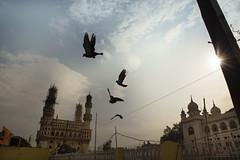 One that flew Away (Arpa Ghosh) Tags: charminar history laad bazar market telangana hyderabad tourism india canon 121clicks heritage nizam qutub