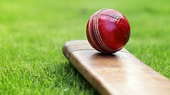 MCA puts off selection of coach for Mumbai Ranji team | The Statesman (sportsgallery1) Tags: theashes countycricket cricketball photography antique sportsbat cricketbat traditionalsport grass colorimage testcricket red leather woodmaterial oldfashioned old englishculture britishculture sport macro horizontal sportofcricket teamsport competitivesport recreationalpursuit summer equipment ball leisuregames seam sportsandfitness teamsports competition sportsbackgrounds