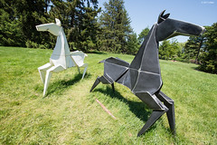 DSC_1496 (critter) Tags: origami mortonarboretum mortonarb kevin box cranes sculpture steel art