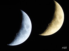 Moon Shots (Tanja-Milfoil) Tags: germany gemacht aufnahme evening picture nikon milfoil tanja luna mond moon