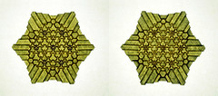 Tessellation Btt-1 (Marjan Smeijsters) (De Rode Olifant - slow - due to hand-surgery) Tags: marjansmeijsters tessellation paper paperfolding tessellationbtt1 butterflymolecule backlight hexagon triangle