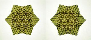 Tessellation Btt-1 (Marjan Smeijsters)