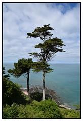 vue sur mer (Christ.Forest) Tags: mer nikon nature hauteur loin vue vert verdure three sea