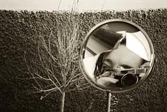 Rota y marchita (llueves) Tags: selfportrait werlisa film 35mm sepia