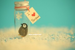 I Love Penguin,Tiny message in a bottle,Miniatures,Personalised Gift,Funny Love Card,Valentine Card,Gift for her/him,Girlfriend gift (charles fukuyama) Tags: winter christmascard christmasgift giftideas handmade custom unique tiny cute decoration homedecor birthdaycard snow anniversary kikuike paper pingüino manchot pinguin ペンギン seasonsgreeting holiday