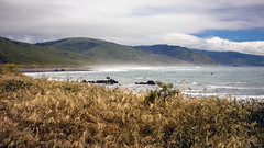 Deserted (San Francisco Gal) Tags: mattoleroad pacific ocean water sea shore grass cloud hill ngc npc coth5