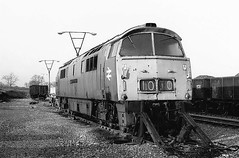 Loco D1010  |  Merehead Quarries UK  |  1979 (keithwilde152) Tags: d1010 westerns thousands foster yeoman merehead uk yard tracks diesel locomotives blackandwhite monochrome outdoor spring 1979