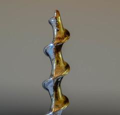 cork screw (paul hitchmough new) Tags: corkscrew paulhitchmoughphotography macro nikond800 nikonphotograhy nikon2470mm wineopener