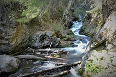 McHugh Creek in Chugach State Park, Anchorage, Alaska (steve_scordino) Tags:
