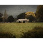 Farm shed thumbnail