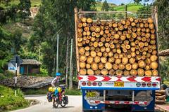 The logging industry in Peru.