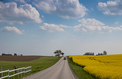 Country Road - HFF!