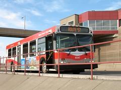 CT_8047_D40LF (Shahid Bhinder) Tags: mypictures transport transit newflyerbuses calgarytransit d40lf