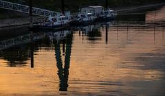 Abendspiegelung (lotharmeyer) Tags: spiegelung polizei boote lotharmeyer nikon color schiffe rhein hafen nikond750 abend