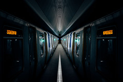 Predator (Panda1339) Tags: 28mm usa summiluxq manhattan oculus architecture subway leicaq nyc pathtrains symmetry