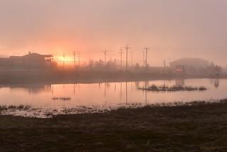 Golden Pond under Foggy Sunset
