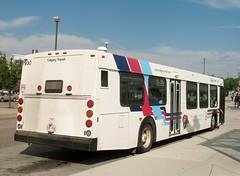 CT_7930_D40LF (Shahid Bhinder) Tags: mypictures transport transit newflyerbuses calgarytransit d40lf