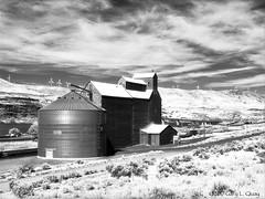 Grain Elevator, Biggs Junction, Infrared (Gary L. Quay) Tags: columbia gorge oregon washington windmill grain elevator biggs junction konica infrared 750 clayton f76 gary quay hasselblad 500cm