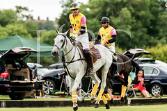 © 2017 Photographs by Robert Piper- All Rights Reserved 697 _ (Ham Polo Club) Tags: jacaranda challengematch vendetta 2017the london polo club tw107ah england gbr