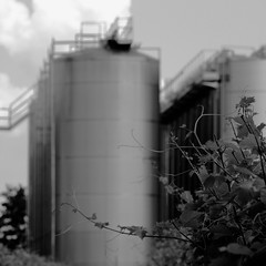 Industrial countryside N.9 B&W (sandroraffini) Tags: industrial countryside hinterland exploration chronic city bw canon 70200 surreal cylinders row metal plants faenza sandroraffini lines curves square continuum new topographics abstract reality