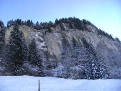... ...face... (project:2501) Tags: wengen jungfrauregion suisse switzerland snow ski travel train bahn wengernalpbahn mountainrailway cograilway theviewfromhere morning morninglight bluelight blue bluebleu bleu inthemountains mountains mountain rock pinetrees alpinefauna ground snowontheground
