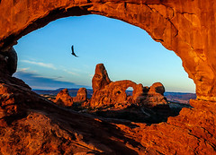 Raven's Tower (CMy23) Tags: absolutelystunningscapes raven utah arches national park window turret arch
