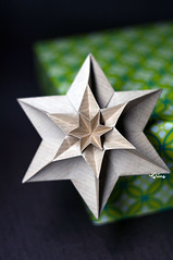 June (talina_78) Tags: origami hexagon star