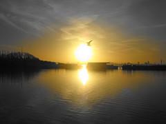 Eye of the sun 太陽の目