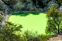 The Devil's Bath (pbradyinct) Tags: sulphur geothermal green devilsbath lake devil waiotapu newzealand