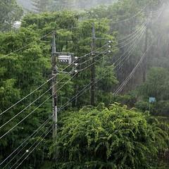 squall (ritsu.w) Tags: squall rain woods electriclines summer nex7