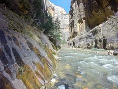 Narrows (Mister Canoehead) Tags: utah narrows zion canyon river hiking