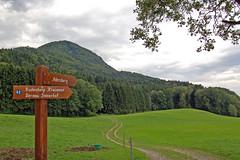 Grassau - Außerorts (Pixelteufel) Tags: grassau bayern bavaria tourismus wiesenlandschaft wald waldgebiet waldbestand baumbestand tannen weg fusweg wandern wanderweg wegweiser hinweisschild hinweis hügellandschaft