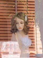 Pensive mannequin in wig shop window, Gothenburg, Sweden (Paul McClure DC) Tags: gothenburg sweden sverige july2015 göteborg shopwindow mannequin