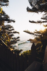 Old spots, new views (vvnnie) Tags: vertical landscape ocean beach water waves sunset nature travel no person view scenic trees frame canon laguna california