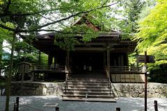 Sanzen-in, Ohara, Kyoto (jtabn99) Tags: nationaltreasure kyoto ohara sanzenin temple green 20170612 日本 大原 京都 国宝 japan nippon nihon