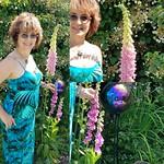 Foxglove, as tall as me, summer garden thumbnail
